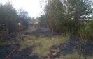 Pożar Ożary i Pilce